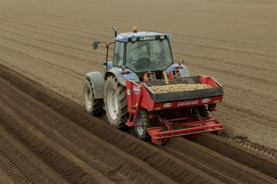 Potato planting. Photo O'Gorman Photography.
