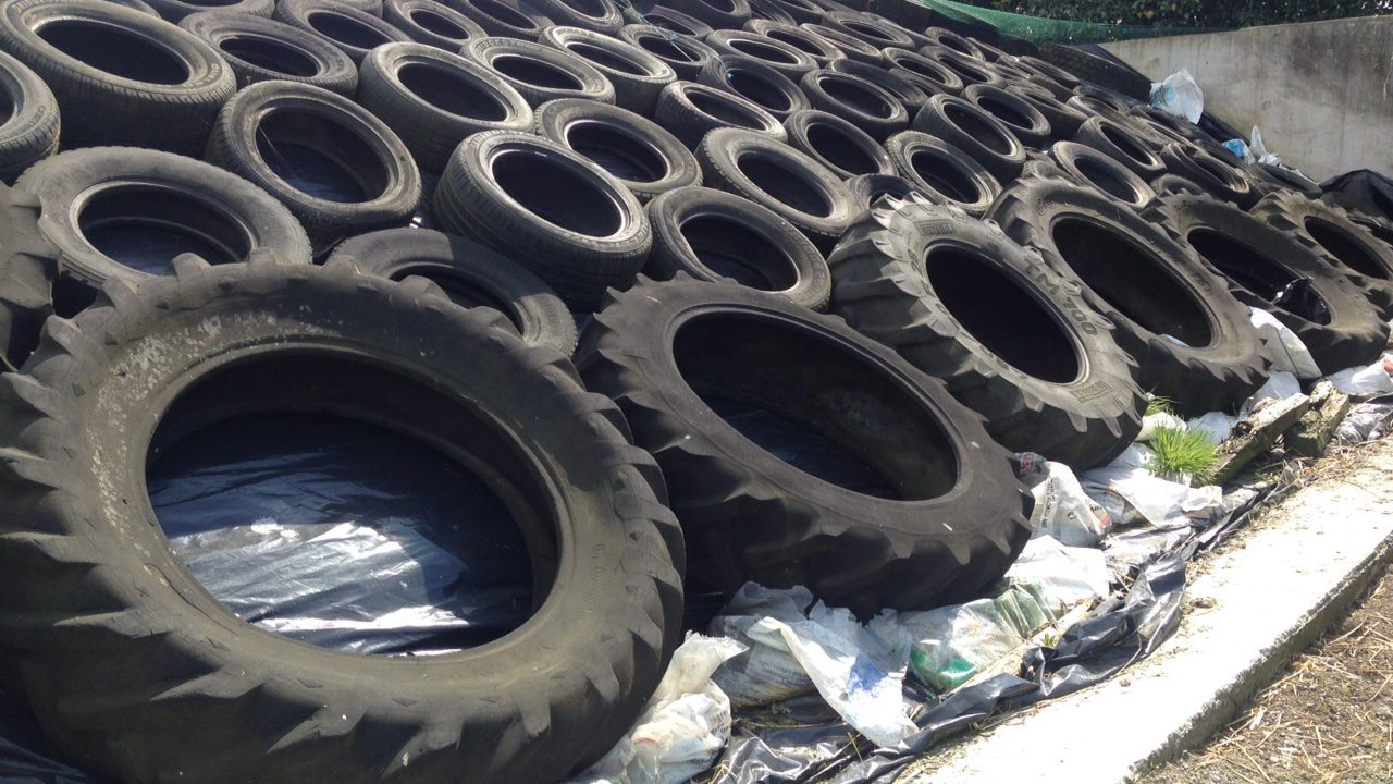 'A silage test is only as good as the forage sample submitted'