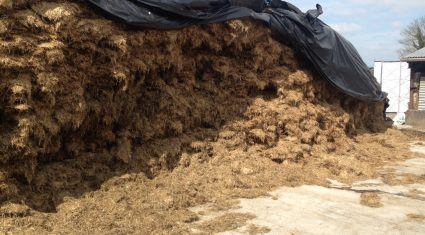 How to ensure good quality silage and preservation – Teagasc