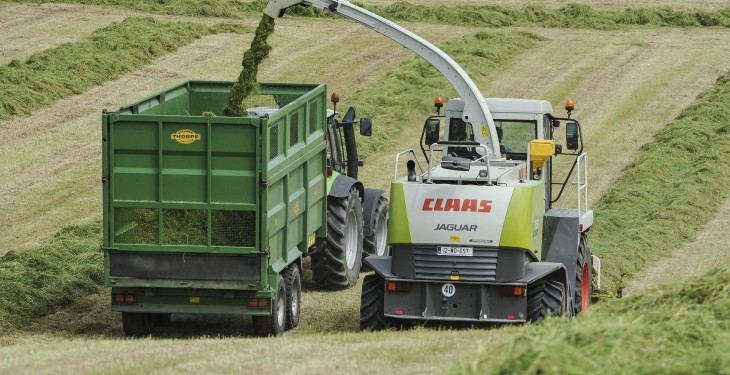Silage – what to do as grass quality deteriorates rapidly