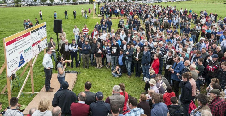 What to expect at Moorepark '19 – the Teagasc National Dairy Event