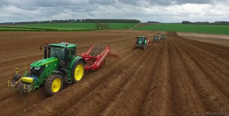 Video: Late planting potatoes? Here's one way to catch up quickly