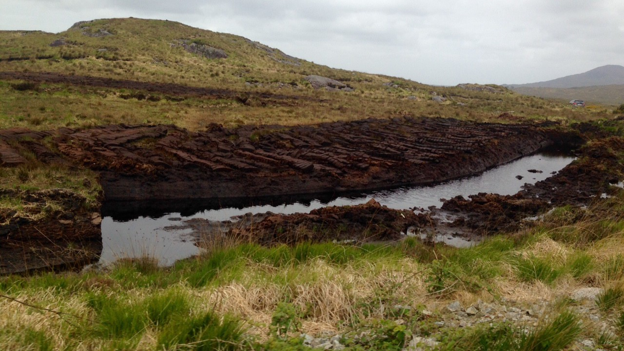 Cutaway bogs to be absorbed into decarbonisation programme