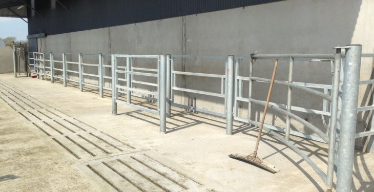 The cattle handling equipment eligible for grant aid under TAMS II