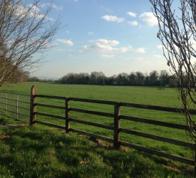 Farmers under GLAS have only a few days to get certain works completed