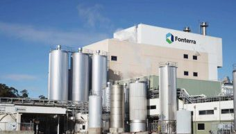 Kiwi dairy giant Fonterra to cut over 500 jobs