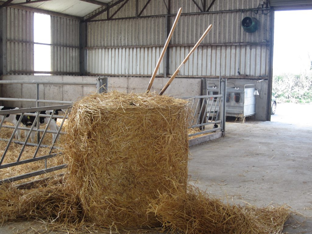 Straw prices on the rise as the calving season gets for Straw bale house cost calculator