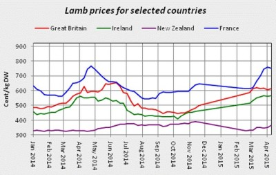 lamb prices 05