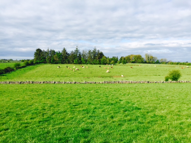 Northern farmers face new compulsory purchase measures