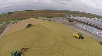 Video: Is your silage pit as big as this one in the US?