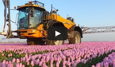 Amazing video captures 36m wide boom spraying tulips