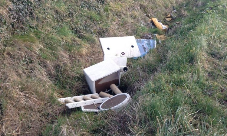 New app allows you to report fly-tipping and littering