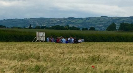Tillage farmers spend €80m/year on crop protection – Teagasc