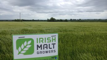New malting barley group to seek contract price negotiating rights