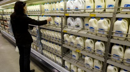 'German milk prices cover less than 70% of costs'