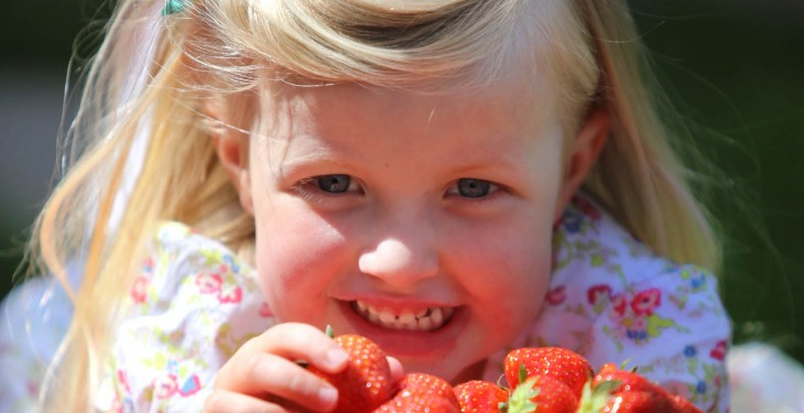 Know everything about strawberries? What's right amount of cream to put on them?