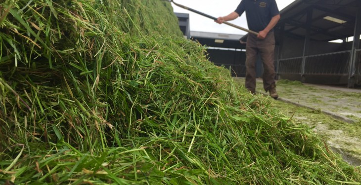 'Good quality silage is not all about dry matter content'