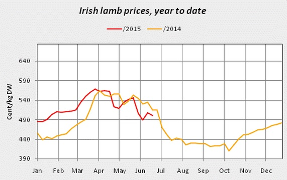 lamb prices 3
