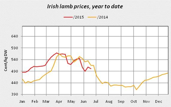lamb prices 3
