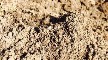 Soil health can be improved by paying attention to 3 pillars