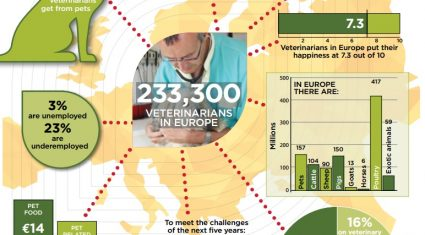 Responsible use of medicines part of EU vets' five-year plan