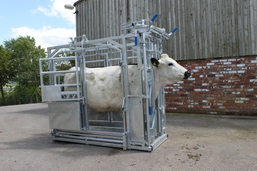 Options for cattle handling equipment under 40% grant scheme