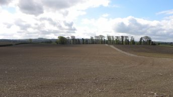 Teagasc tips for successful grass reseeding