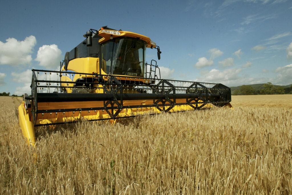 Выращивание зерновых технических и прочих сельскохозяйственных 583