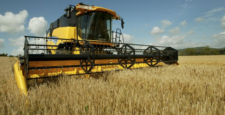 Combines could be cutting the first winter barley by mid July