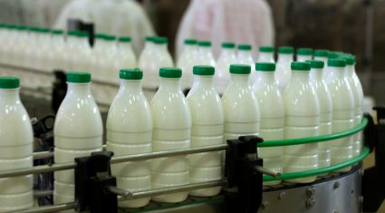 UK supermarkets in milk price war but milk is still cheaper in Ireland