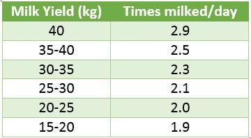 Milking times