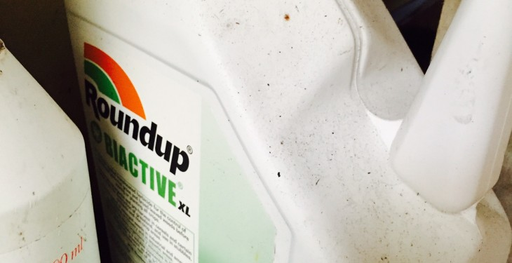 Key ingredient in Roundup (glyphosate) under EU review