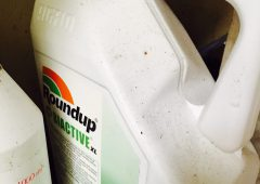 Sale, distribution and use of Roundup product banned in France
