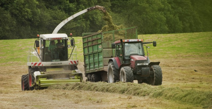 Winter silage shortage looms amidst summer sizzler – Ring
