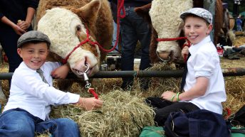 Why 15,000 people are set to attend Virginia Show this year