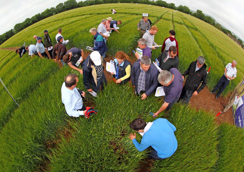 Farmers at the Seedtech & Syngenta open day
