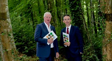 Coillte announces 46% growth in operating profit to €60.5m