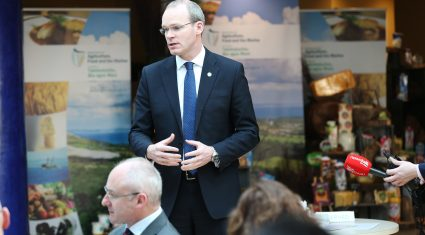 Legal protection of certain Irish foods strengthened by law