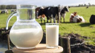 Did you hear the joke of the Kerry farmer seeking a 'leading milk price'?