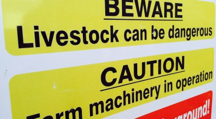 HSA investigating farm death after woman dies after cow attack
