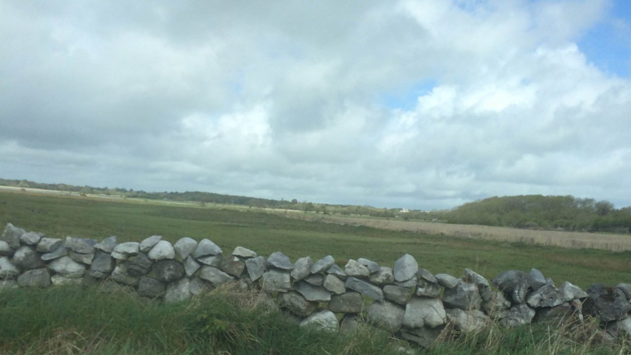 Sunny spells and scattered showers for the week ahead – Met Eireann