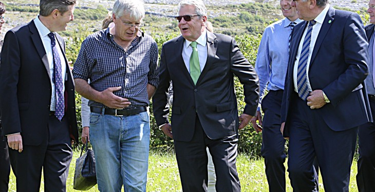 German President visits Irish beef and sheep farm