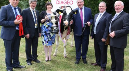 €10,000 up for grabs at dairy livestock competition