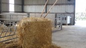 Straw prices: Big square bales hit €75