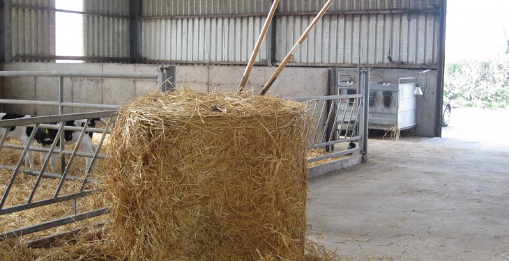 Straw prices average less than €25/bale