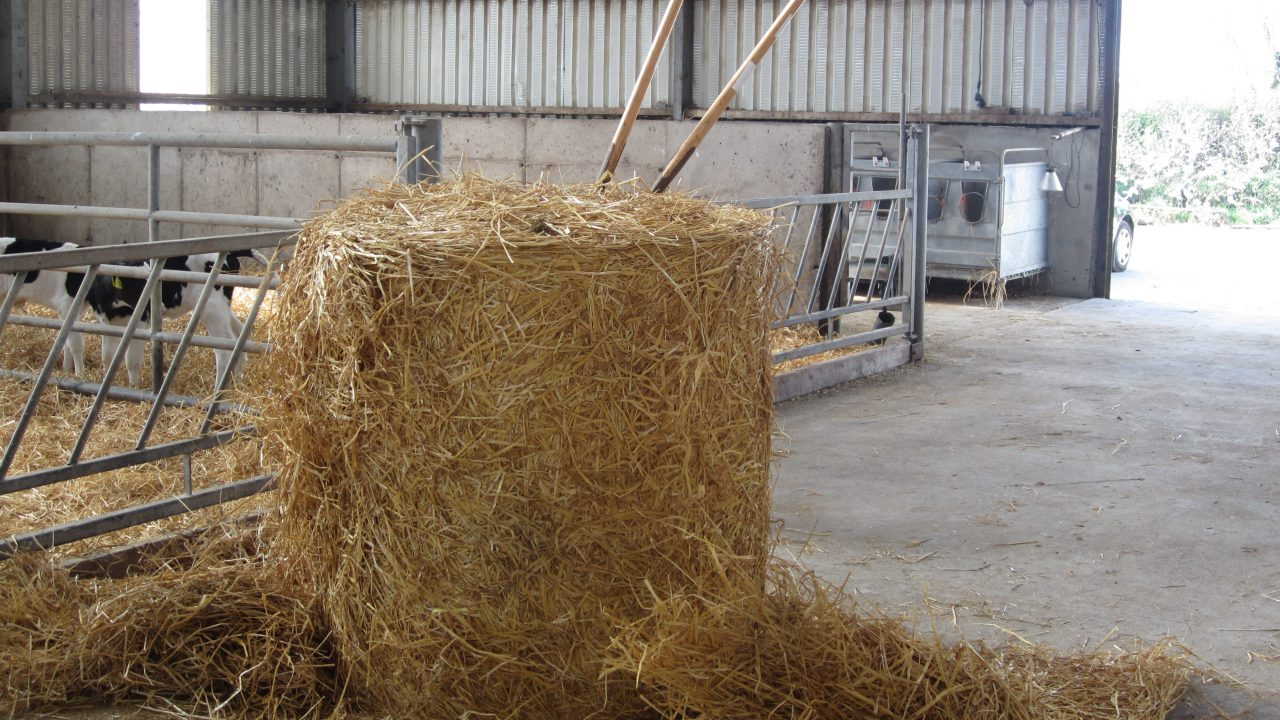 Straw market steady as prices remain close to €20/bale