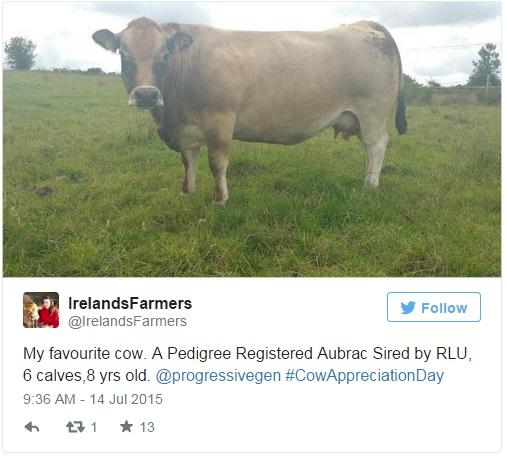 irelands farmers