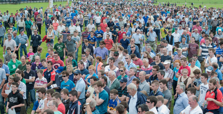 Pictures from Moorepark '15 as 13,000 visit dairy event