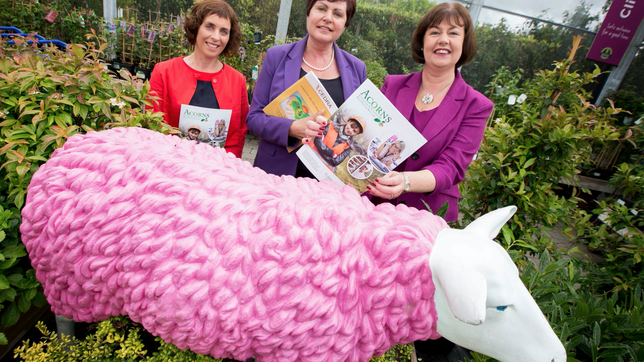 Are you a female entrepreneur in rural Ireland? A new fund can help you