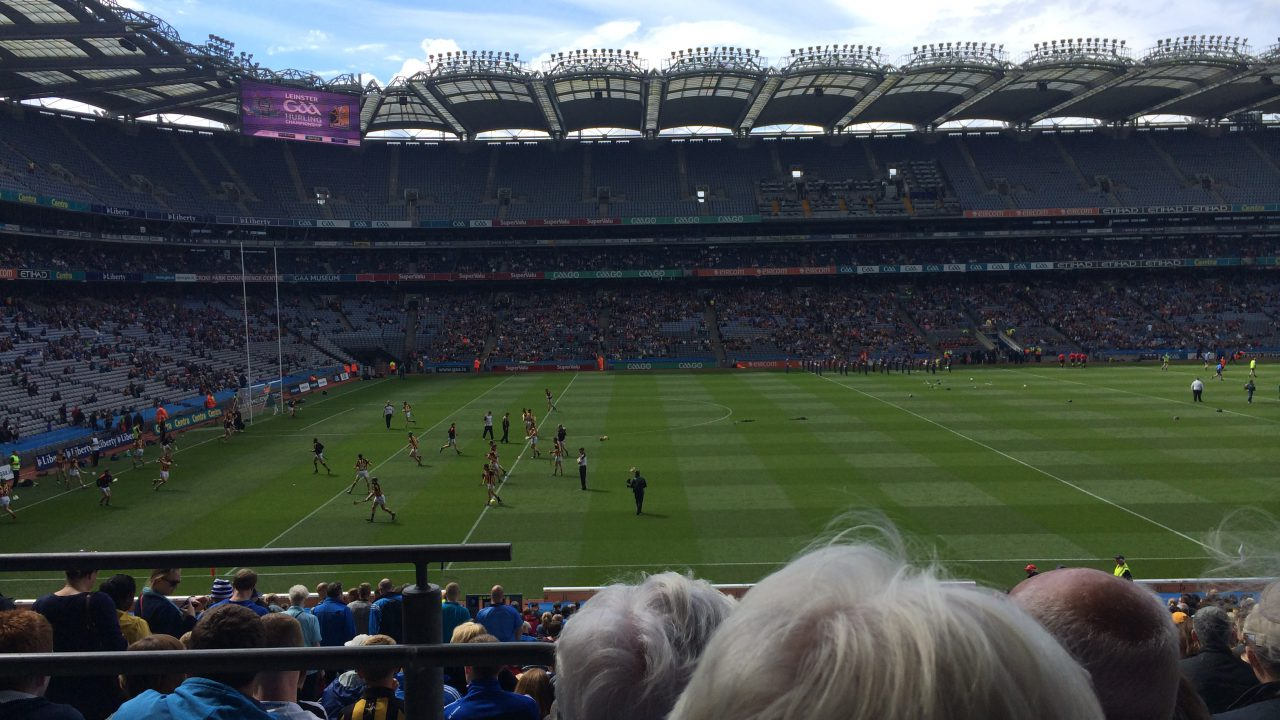 Forget about the cats, a hawk has deterred the Croke Park pigeons